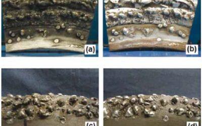 Torque Sensors Evaluate Wear on Sugar Cane Rolls